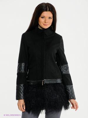 Куртка Acasta. Цвет: черный