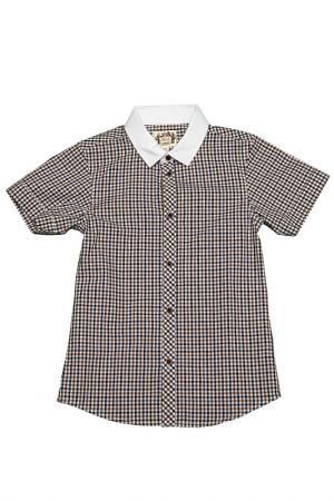 Рубашка il MIO tutto. Цвет: коричневый