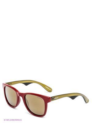 Солнцезащитные очки CARRERA. Цвет: красный