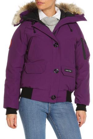 Куртка Canada Goose. Цвет: фиолетовый