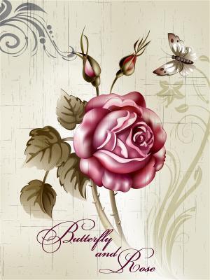 Картина - репродукция Роза Magic Home. Цвет: белый,розовый