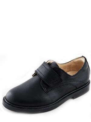 Туфли PRIMIGI. Цвет: черный