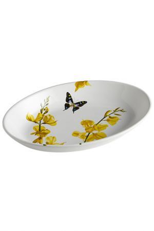 Блюдо овальное 28х40 см Ceramiche Viva. Цвет: мультицвет