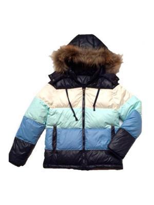 Куртка Stilnyashka. Цвет: голубой, белый, синий, светло-зеленый