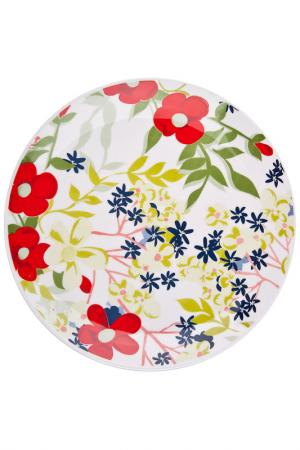 Тарелка обеденная Сандей 28 см Biona. Цвет: мультиколор