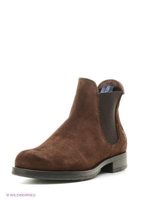 Ботинки U.S. Polo Assn.. Цвет: коричневый