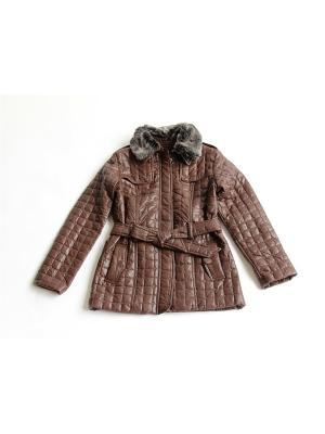 Куртка Proto. Цвет: коричневый