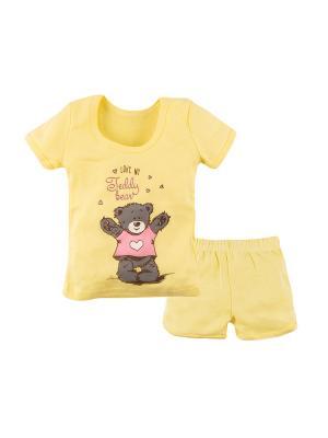 Комплект (футболка, шорты) Машук. Цвет: желтый, серый