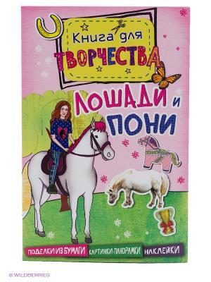 Лошади и пони (Мини серия) Издательство Махаон. Цвет: белый
