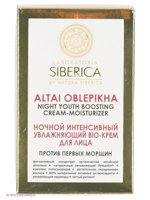 Крем ночной  bio увлажн.против первых морщин50мл Natura Siberica. Цвет: бордовый