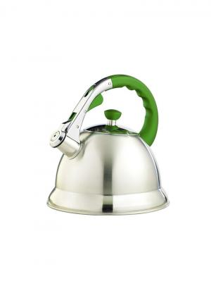 Чайник  TECO 106G-TC. Цвет: зеленый, серебристый