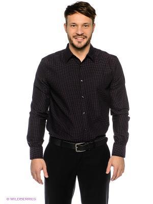 Рубашка TOM FARR. Цвет: фиолетовый, черный