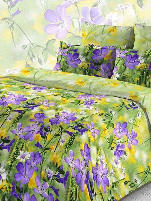 Комплект постельного белья Letto. Цвет: зеленый, фиолетовый, желтый