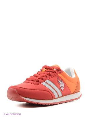 Кроссовки U.S. Polo Assn.. Цвет: оранжевый