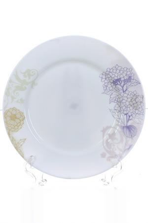 Тарелка столовая 6шт, 25 см Polystar. Цвет: мультицвет
