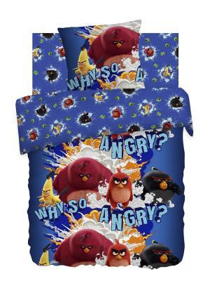 Комплект постельного белья Angry Birds.. Цвет: синий