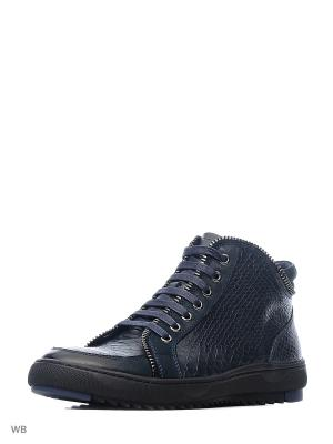 Ботинки Companion. Цвет: синий