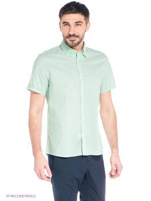 Рубашка MONDIGO. Цвет: светло-зеленый