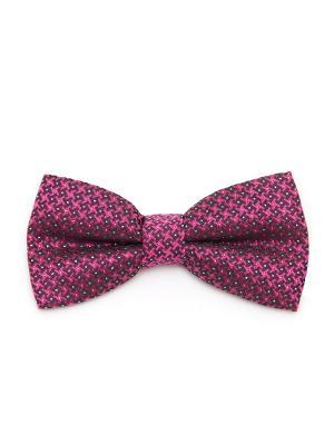 Галстук-бабочка Churchill accessories. Цвет: черный, белый, индиго, лиловый, сиреневый, сливовый, темно-фиолетовый, фиолетовый, фуксия