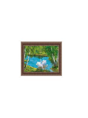 Лебединая стая В934 Картина в раме 20х30 PROFFI. Цвет: зеленый, голубой, белый