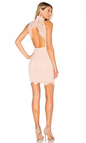 Мини платье victorian Nightcap. Цвет: розовый