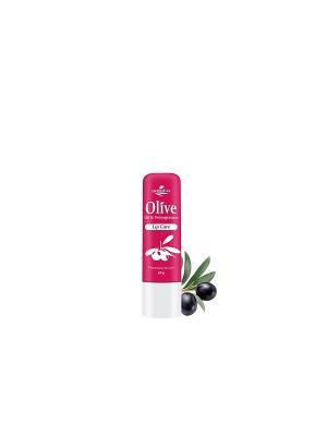 Герболив гигиеническая губная помада с гранатом, 4,5гр Madis S.A.. Цвет: оливковый