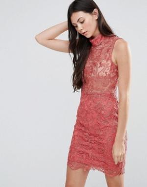 Pixie & Diamond Кружевное платье мини с высоким воротом. Цвет: розовый