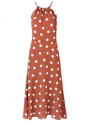 Polka dot dress Andrea Marques. Цвет: коричневый