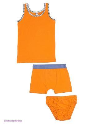 Комплект HAYS. Цвет: рыжий, оранжевый
