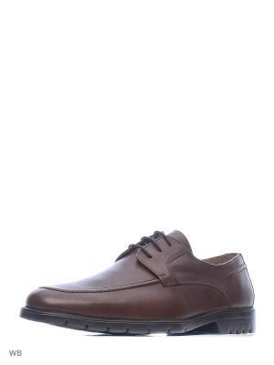 Туфли WOODS. Цвет: коричневый