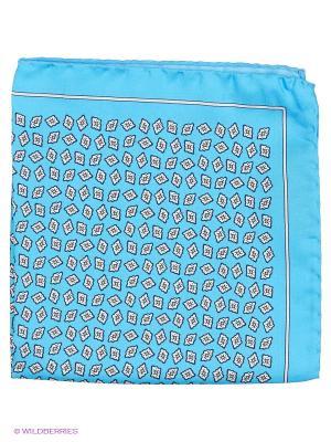 Платок-паше Troy collezione. Цвет: голубой