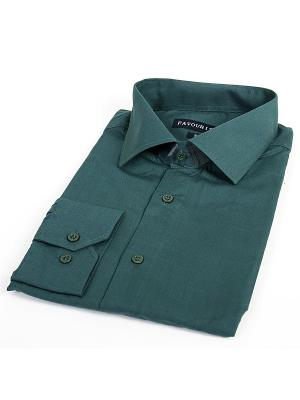 Рубашка Favourite. Цвет: зеленый