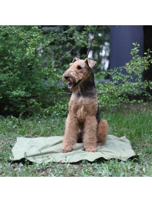 Охлаждающий коврик для собак  50*70 см OSSO-fashion. Цвет: зеленый