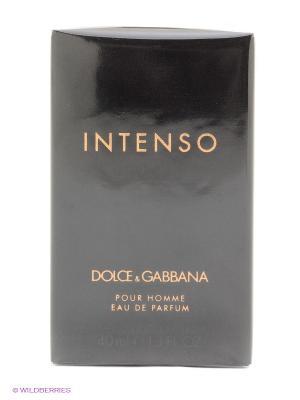 Парфюмированая вода Intenso Ph, 40 мл DOLCE & GABBANA. Цвет: черный
