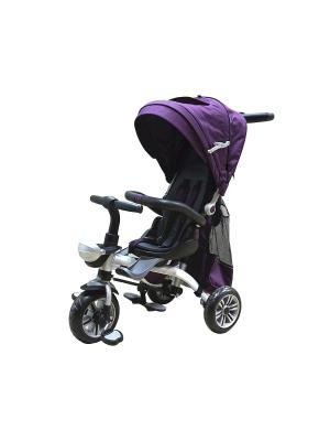 Велосипед детский, 3х-колесный с алюминиевой рамой, фиолетовый (MT-BCL0815001) Pit Stop. Цвет: фиолетовый
