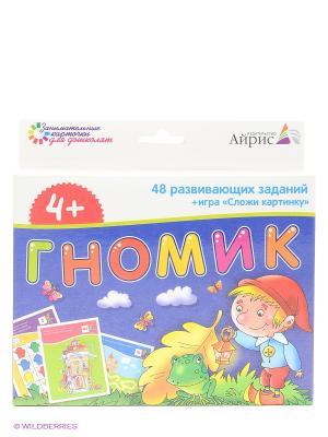 Набор занимательных карточек для дошколят. Гномик АЙРИС-пресс. Цвет: темно-синий, белый