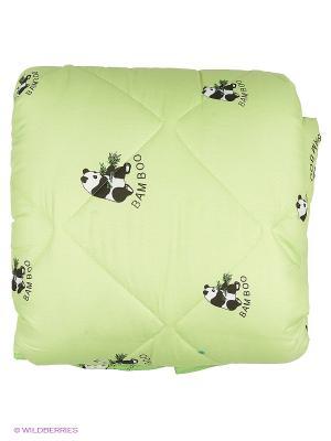 Одеяло Letto бамбук Панда в п/э 2,0 сп универс. чемодане, 170*215см. Цвет: зеленый