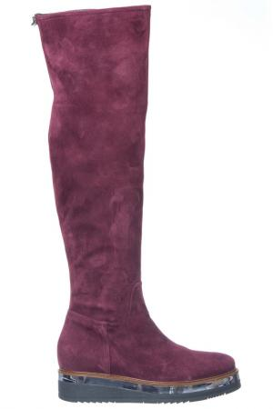 High boots Loretta Pettinari. Цвет: bordeaux