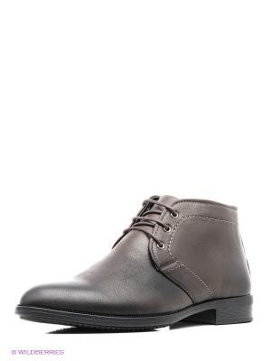 Ботинки Marko. Цвет: коричневый
