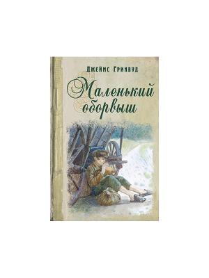 Маленький оборвыш. Книги на все времена Энас-Книга. Цвет: зеленый