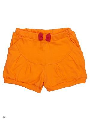 Шорты Genstaro Baby. Цвет: оранжевый, красный