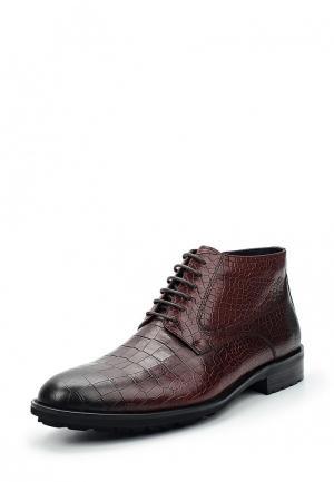 Ботинки классические Vitacci. Цвет: коричневый