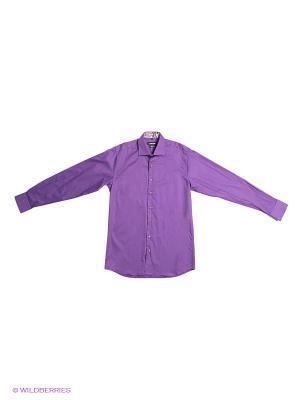 Рубашка Donatto. Цвет: фиолетовый