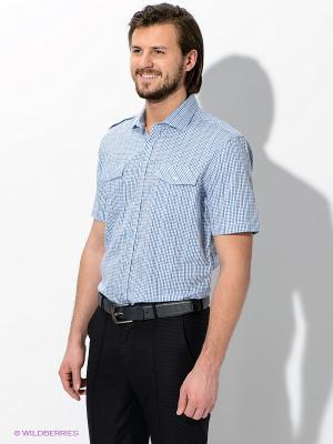 Рубашка Maestro. Цвет: голубой, белый, синий