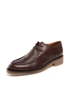 Ботинки THOMAS MUNZ. Цвет: темно-коричневый