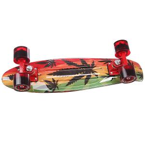Скейт мини круизер  Rasta Red/Green 22 (55.9 см) Turbo-FB. Цвет: красный,зеленый