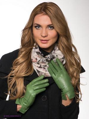 Перчатки Dali Exclusive. Цвет: светло-зеленый