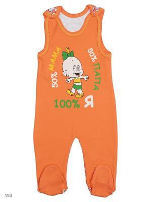 Ползунки для новорожденных Bonito kids. Цвет: оранжевый