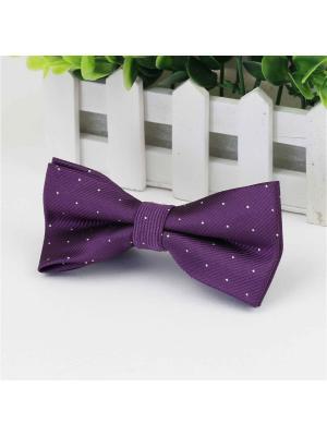 Галстук-бабочка Churchill accessories. Цвет: фиолетовый,белый