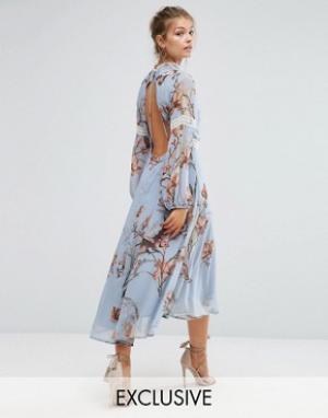 Hope and Ivy Платье миди с принтом, открытой спиной и кружевными вставками & I. Цвет: мульти
